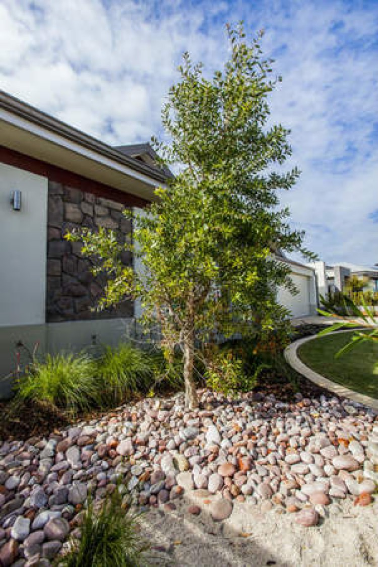 Residential garden and irrigation service provider