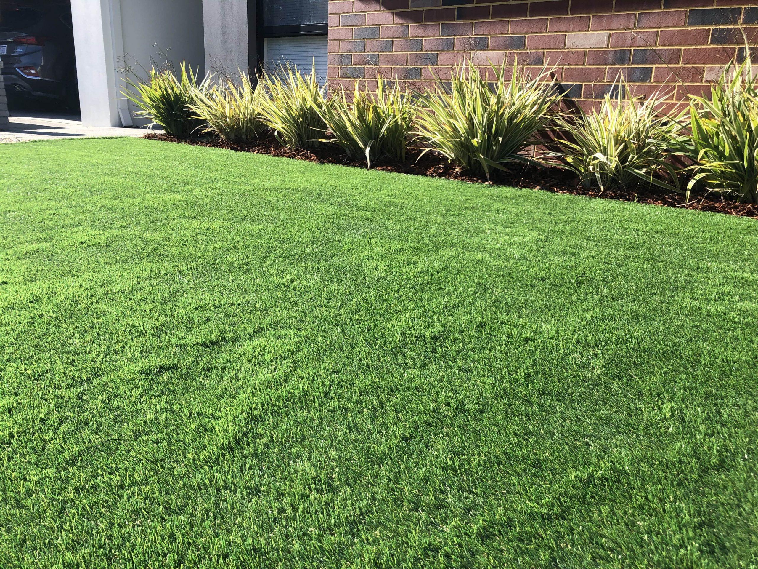 Lush Greenery Backyard