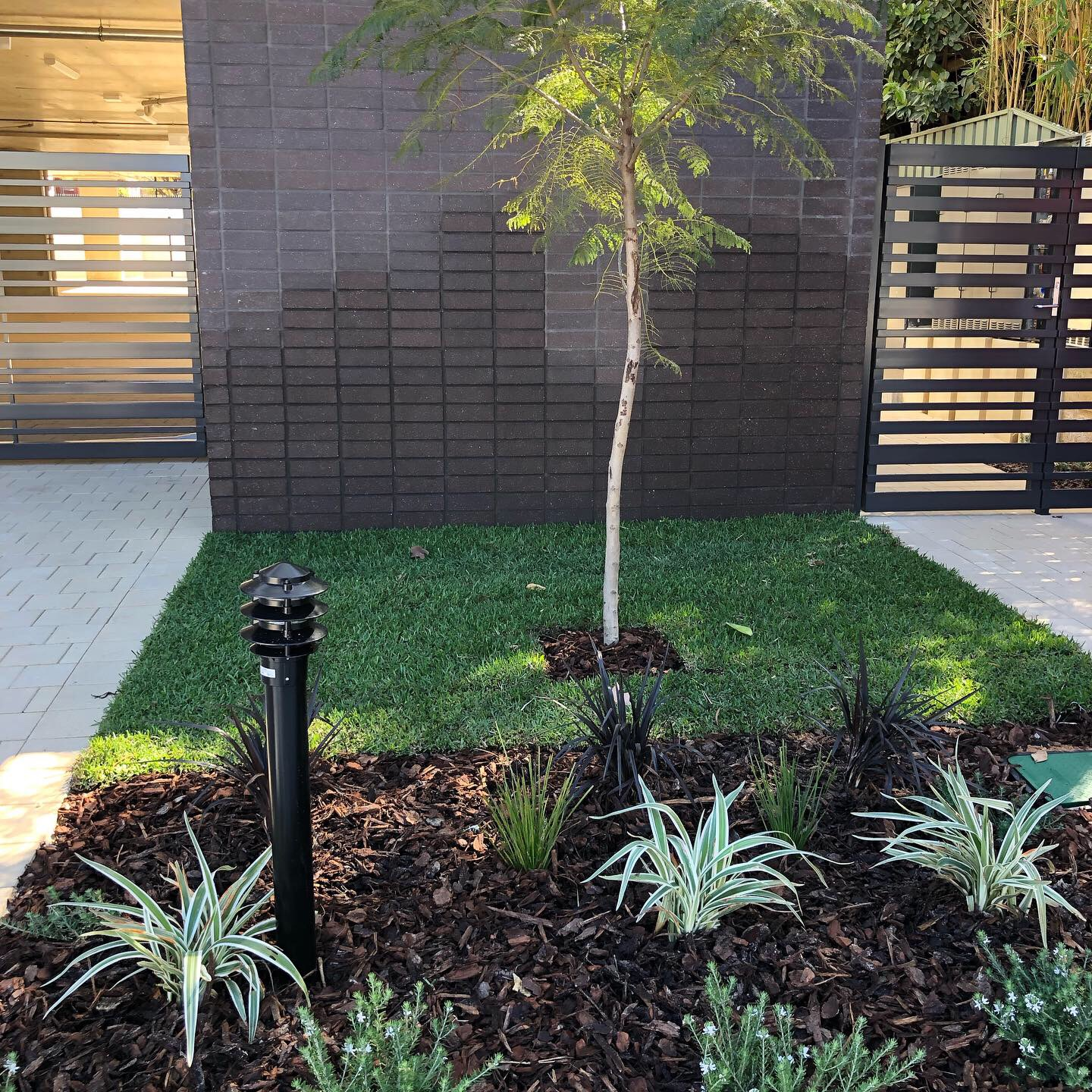 Grass and mulch with small plants to complement the front gate of a house.